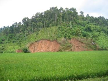 Assam 1