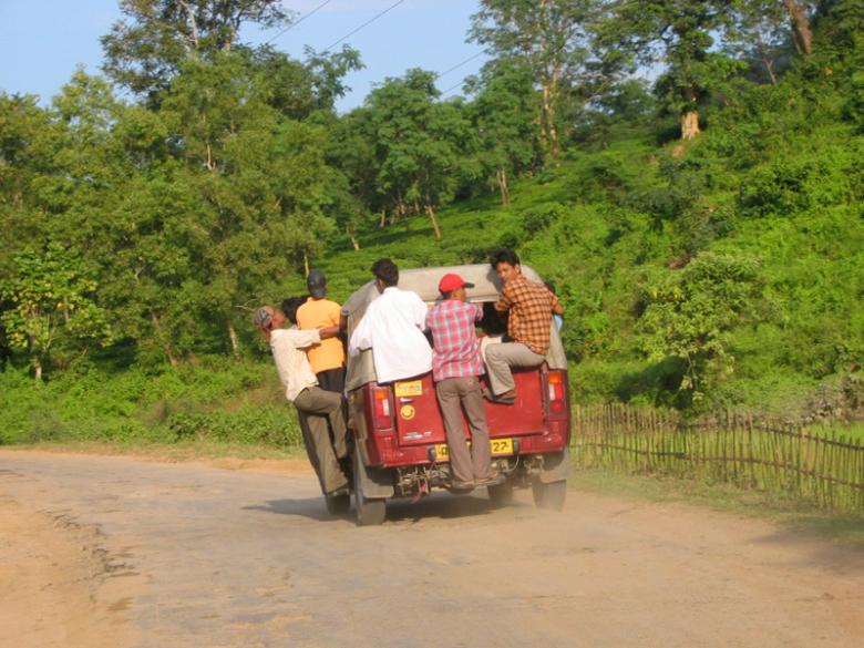 Assam 9