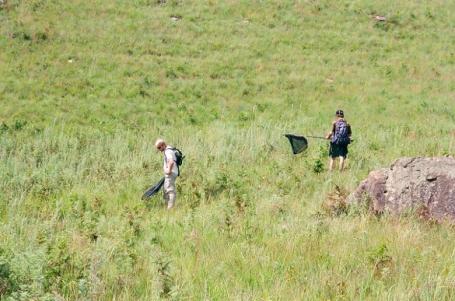 Drakensburg 7