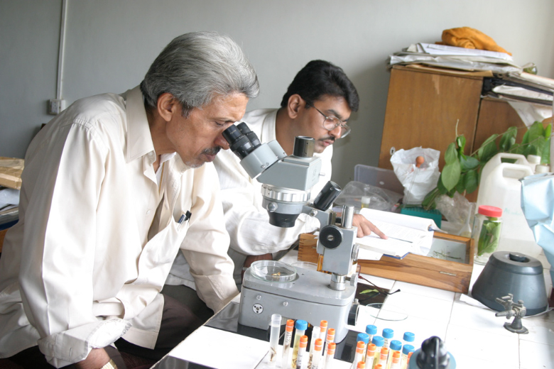Ghate Lab 9