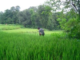 India2005-074