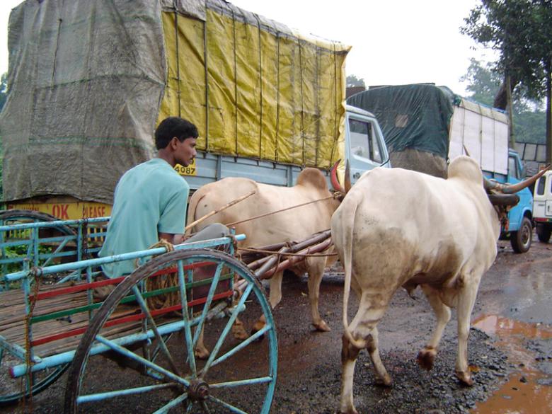 India2005-090