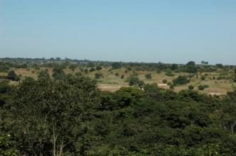 Kumasamba 14