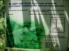 Malaysia-crane-sign-034