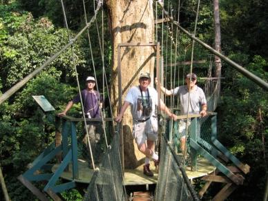 Mulu Canopy Walk6
