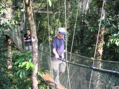 Mulu Canopy Walk7