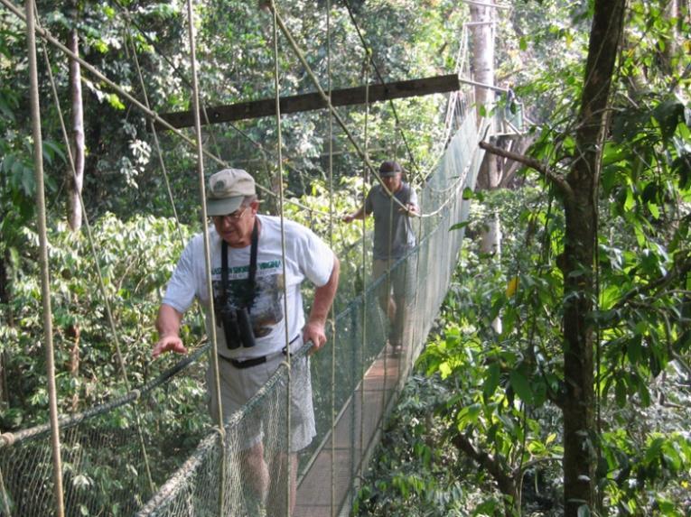 Mulu Canopy Walk9
