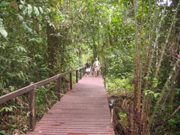 Mulu Path