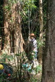 Pon Mudi climb 1