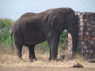 Rwanda-2014-01
